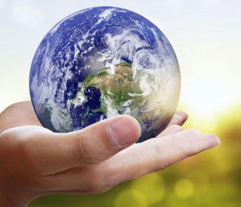 15 lucruri simple pe care le poti face pentru a proteja planeta